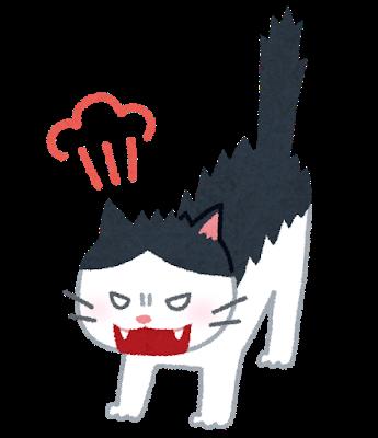 フーッ!と背中の毛を逆立てて怒っている猫のイラスト
