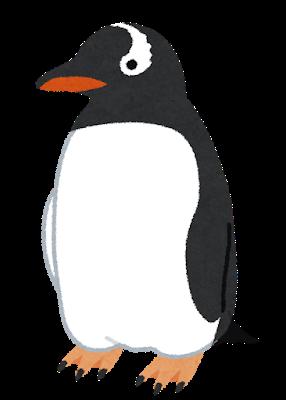 イラスト:目から頭を通る白い模様が特徴的なペンギン、ジェンツーペンギン
